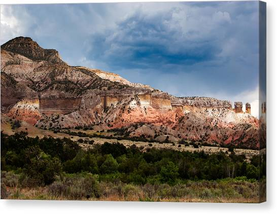 Nature's Paintbrush Canvas Print