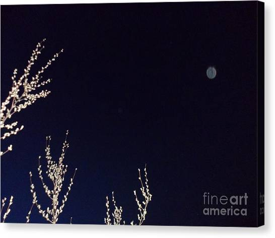 Nature's Watchful Eye Canvas Print