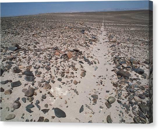 Sandy Desert Canvas Print - Nazca Line by David Nunuk