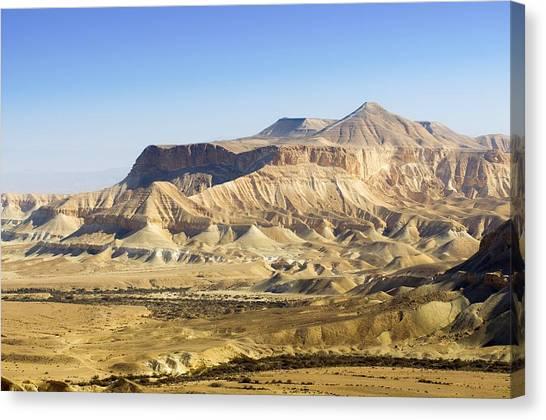 Negev Desert Canvas Print - Negev Desert, Israel by Photostock-israel