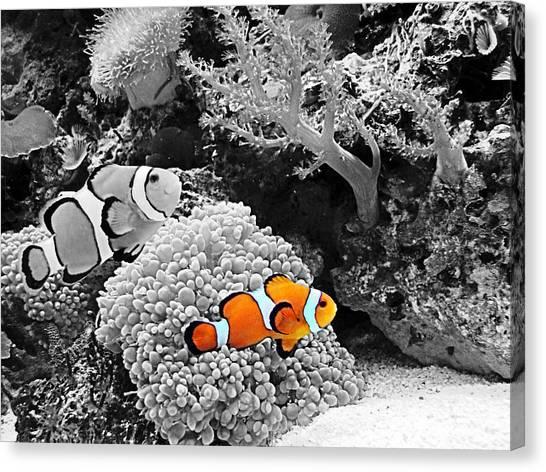 Nemo At Home Canvas Print