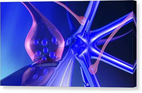 Nerve Synapse Canvas Print by Pasieka