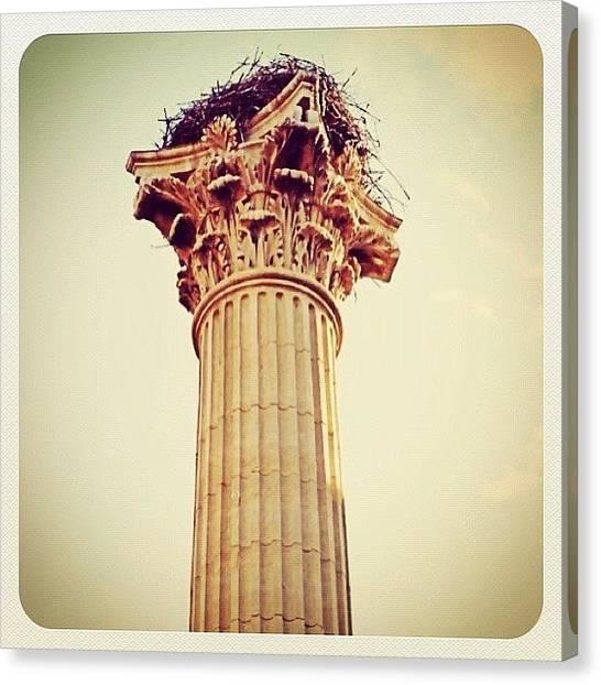 Storks Canvas Print - Nest Of Stork On Column by Giuseppe Anello
