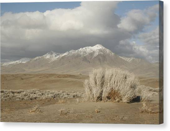 Nevada Scene Canvas Print