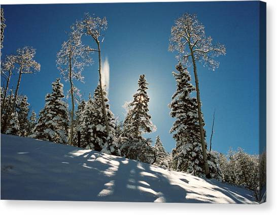New Fallen Snow Canvas Print