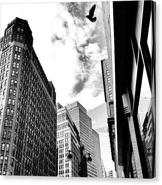 Times Square Canvas Print - New York City - In Flight by Vivienne Gucwa