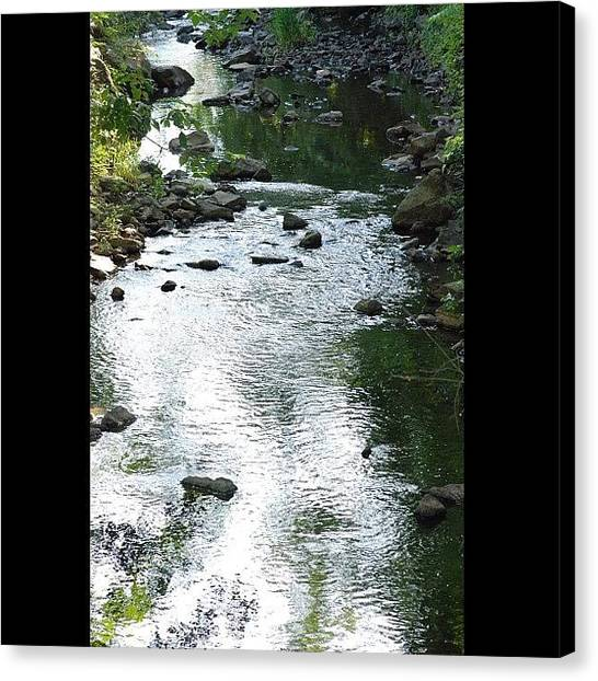 Kings Canvas Print - #newjersey #randomfind #water #creek by Cai King-Young