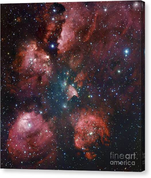 Bear Claws Canvas Print - Ngc 6334, The Cats Paw Nebula by Robert Gendler