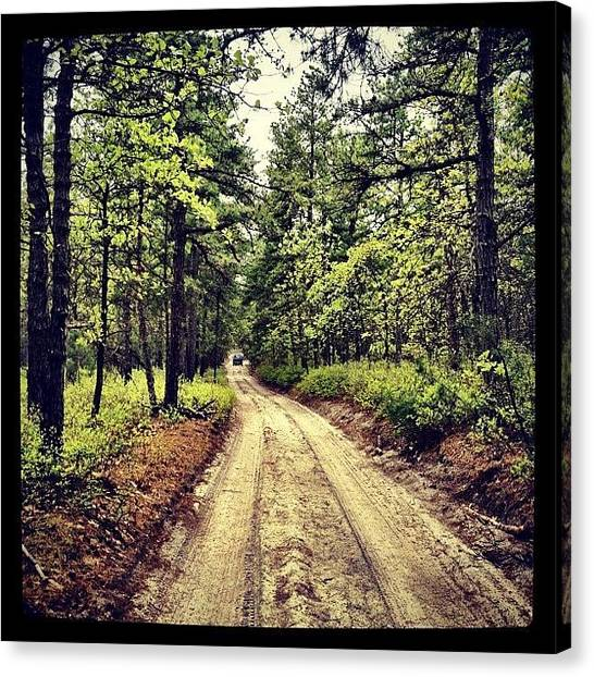 Volkswagen Canvas Print - Nice Day For A #trailride by A Loving