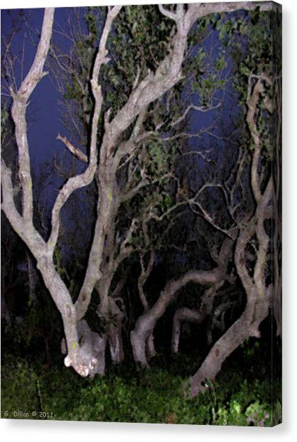 Night Branches Canvas Print
