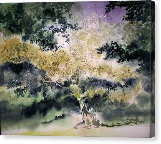 Nightsade Canvas Print