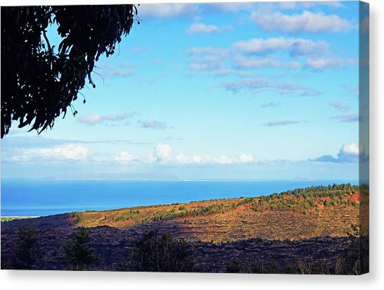 Mango Tree Canvas Print - Niihau The Forbidden Isle by Kevin Smith