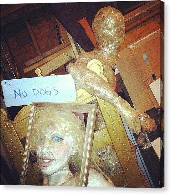 Mardi Gras Canvas Print - No Dogs by Rachael Sansing