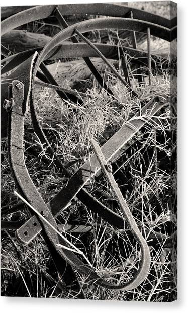 No More Plowing Canvas Print