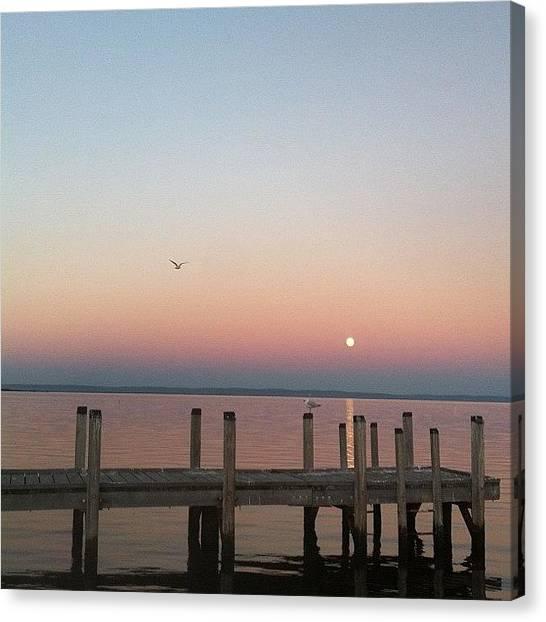 Seagulls Canvas Print - #nofilter #bird #seagull #fly #sunset by Jessica Barrett
