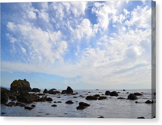 Northern California Coast1 Canvas Print