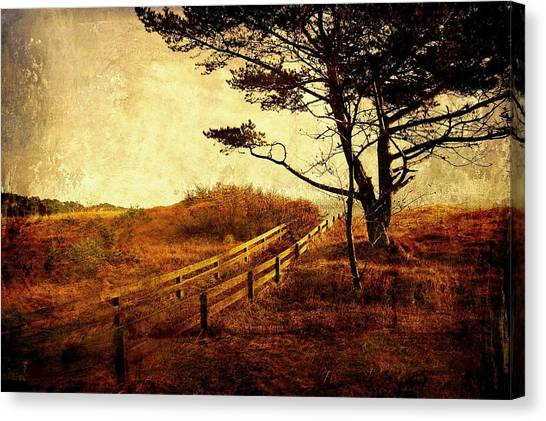 Norwegian Pine Canvas Print