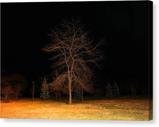 November Night Canvas Print