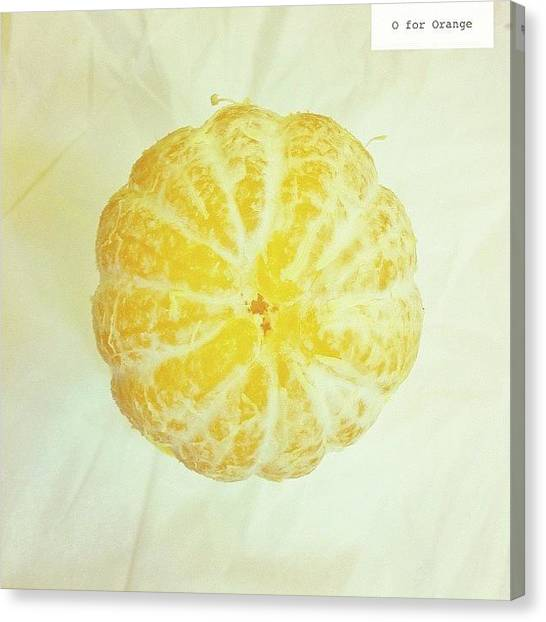 Medicine Canvas Print - O For Orange by Dicky Sutanto