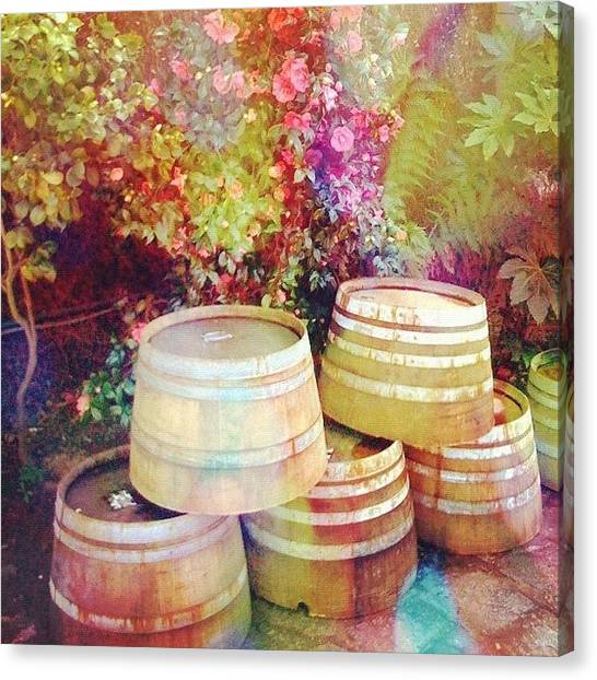 Wine Barrels Canvas Print - Oak Casks #winery #napa_ca #vineyard by Anna Porter