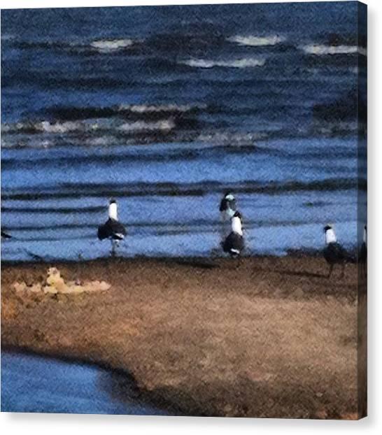 Mississippi Canvas Print - #ocean #blue #water #waves #beautiful by Tammy Gossett