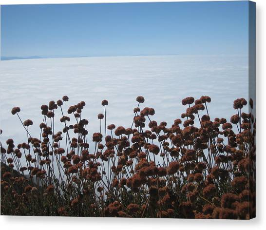 Ocean Of Clouds Canvas Print by Diana Poe