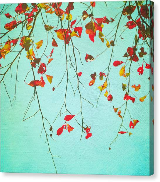 October Greetings Canvas Print by Sharon Kalstek-Coty