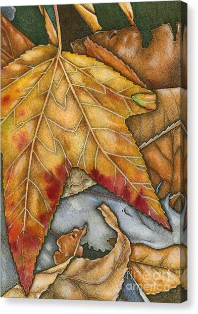 October Canvas Print by Nora Blansett
