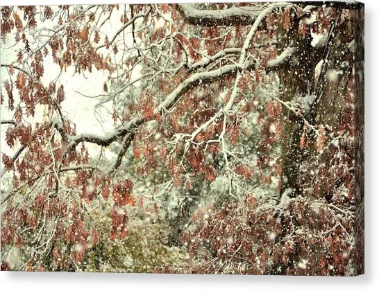 October Snowstorm Canvas Print by JAMART Photography