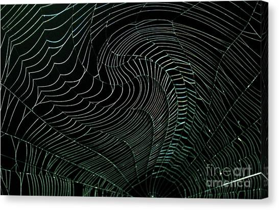 Oh What A Twisted Web..... Canvas Print by Monica Poole