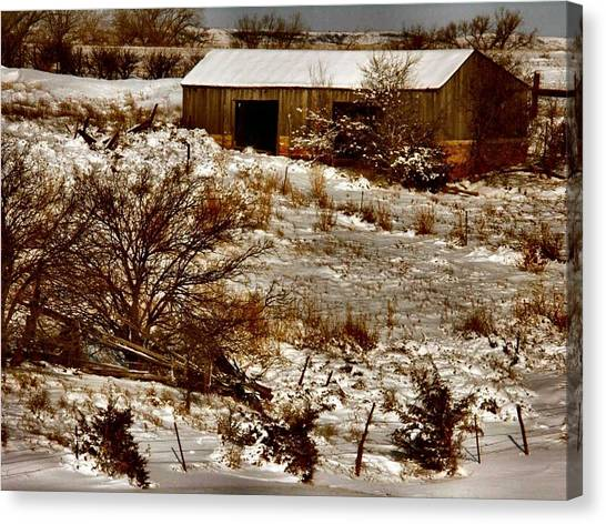 Ohhhh Its Cold Canvas Print by Lynne and Don Wright