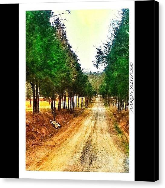 Dirt Road Canvas Print - #old #dirt #road #trees #trail #path by Aaron Justice