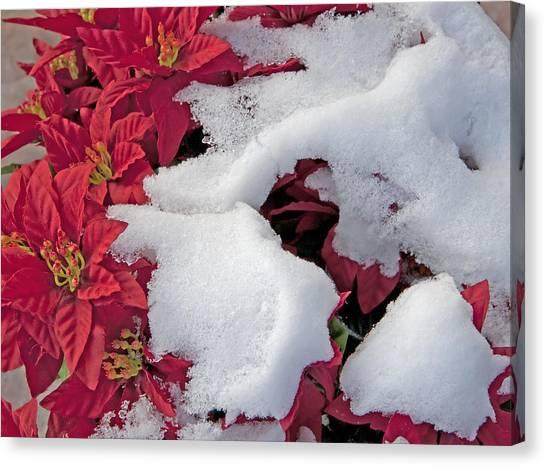 Old-fashioned Christmas 7 - Gardener Village Canvas Print by Steve Ohlsen