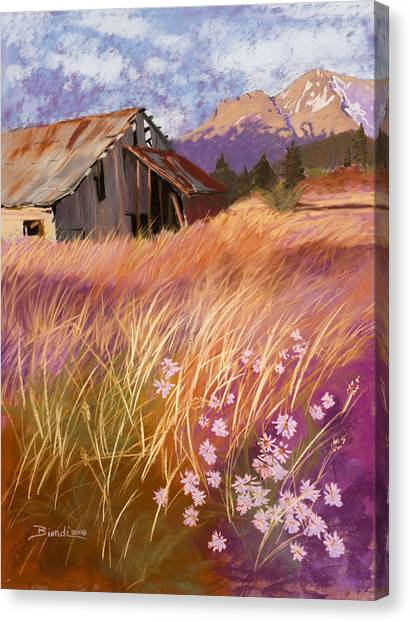 Old Land Trust Barn Mount Shasta Canvas Print
