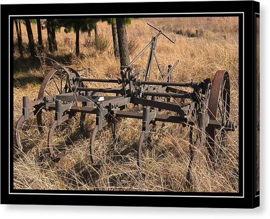 Old Plough Canvas Print by Miguel Capelo