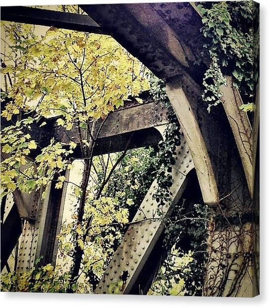 Autumn Leaves Canvas Print - Old Rail Bridge And Autumn Leaves by Daren Leonard