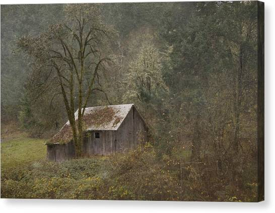 Old Shed Canvas Print