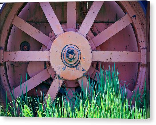 Caterpillers Canvas Print - Old Spokes by Steve McKinzie
