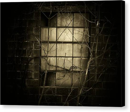 Old Window Canvas Print by Michael L Kimble