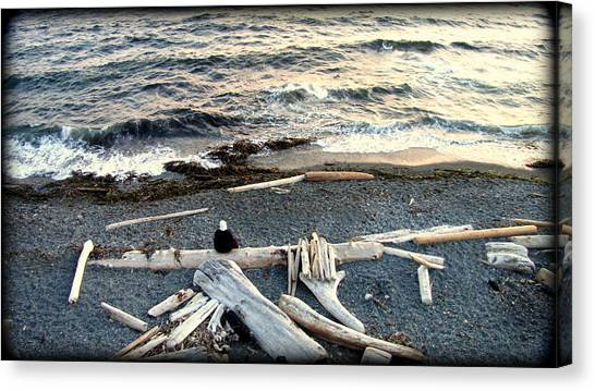 Old Woman And The Sea Canvas Print by Judy Garrett