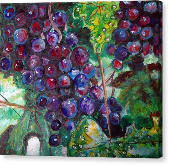 On The Vine Canvas Print by Kat Richey
