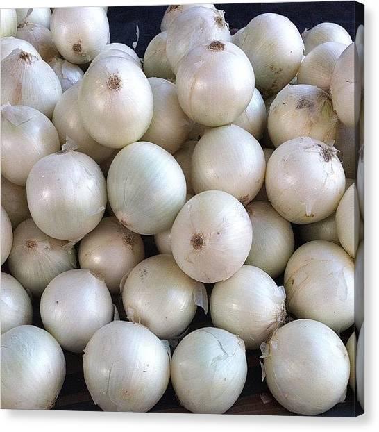 Onions Canvas Print - #onions #instagood #tweegram by Ismail Velioglu