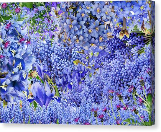 Only Blue Flowers Canvas Print