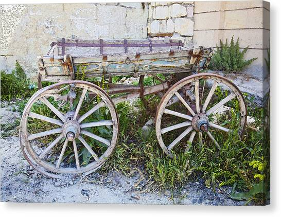 Only One Previous Owner Canvas Print by Kantilal Patel
