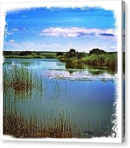 Marshes Canvas Print - #ontario #canada #marsh Are Near One Of by Shelley Walsh