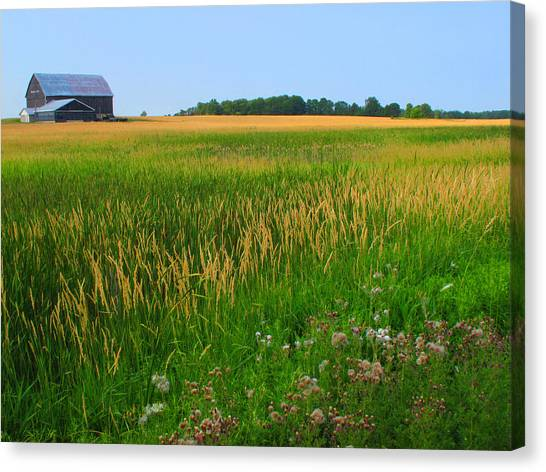 Ontario Farm  Canvas Print by Lyle Crump