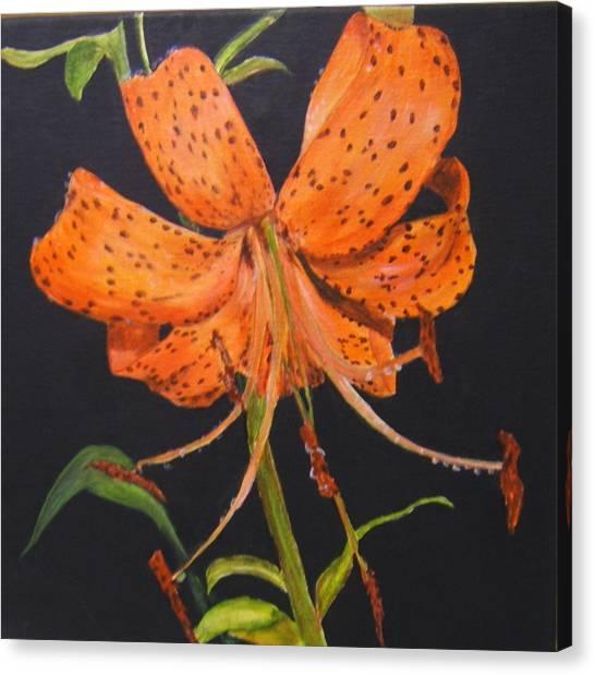 Orange Day Lilies Canvas Print