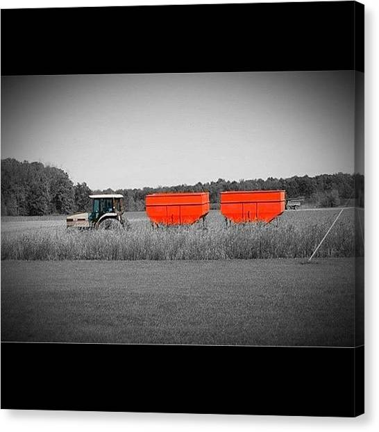 Harvest Canvas Print - #orange #iphonesia #iphoneography by Sherri Galvan