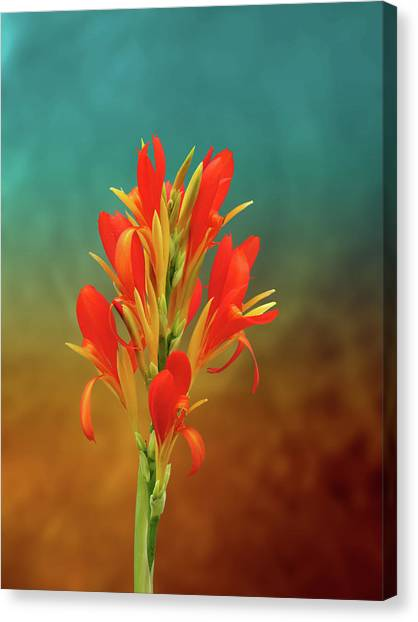 Orange Spray Of Flowers On Golden Blue Canvas Print by Michael Taggart II