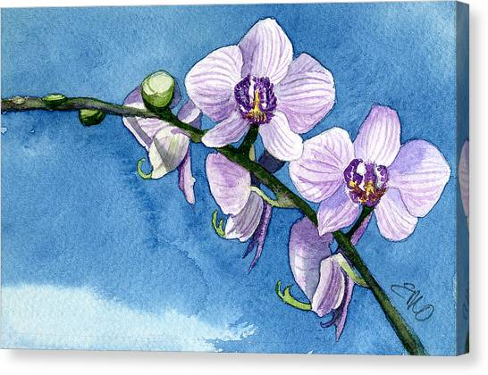 Orchid Canvas Print by Eunice Olson